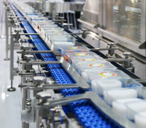 Factors To Consider When Choosing a Conveyor System